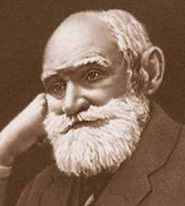 Павлов И.П. - теория гипнотизма